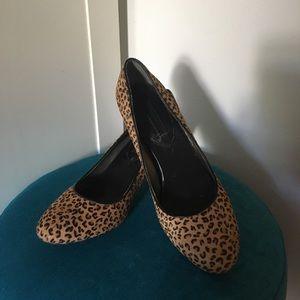 Banana Republic leopard heels